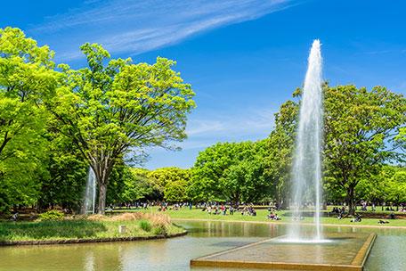 噴水・池設備、屋上緑化等潅水設備の計画・設計